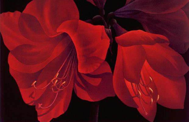 Энн Солсбери. Красные цветы
