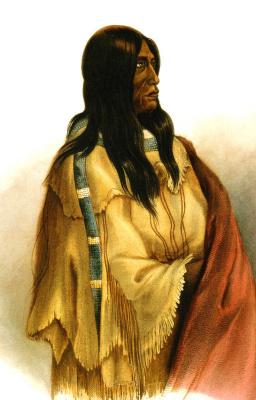Карл Бодмер. Женщина змеиного племени