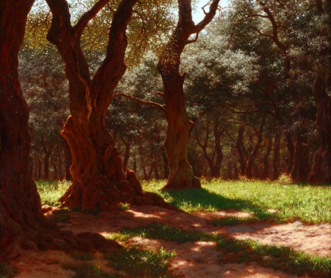 Ivan Fedorovich Schultze. Olive grove on a promontory of Saint-Martin