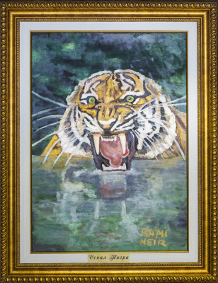 Rami Meir. Grin of a tiger