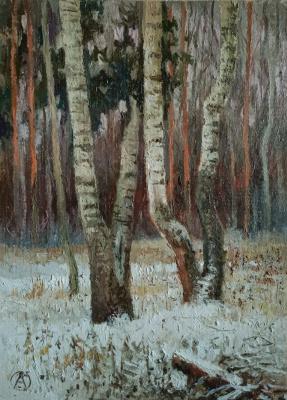 Ольга Акрилова. Winter birches