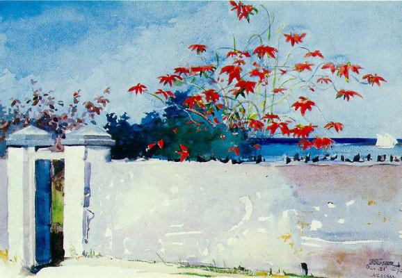 Winslow Homer. A Wall, Nassau