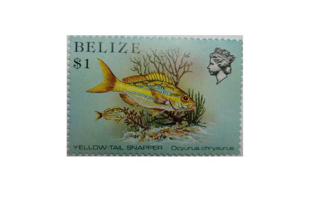 """Arthur Gabdrupes. """"Image"""": """"Brand""""; Mail: Belize. Archiv (z) (1)"""