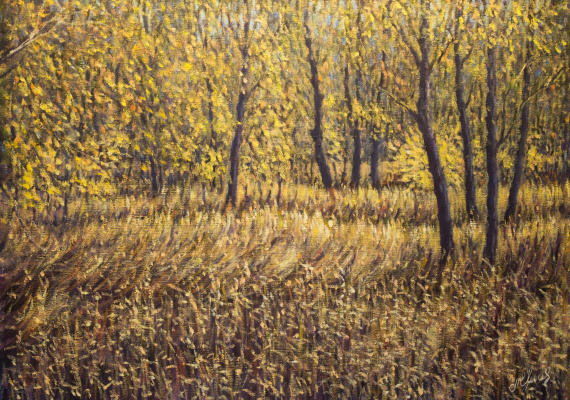 Valery Levchenko. No. 418 In the forest of the Akhtuba floodplain