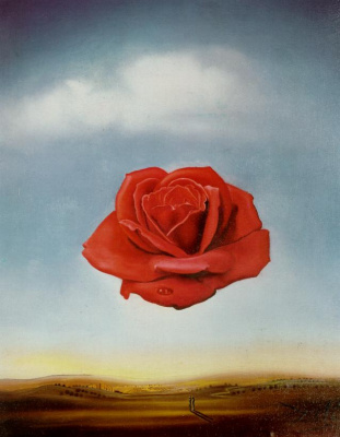 Salvador Dali. Meditative rose