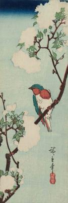 """Утагава Хиросигэ. Птица на усыпанной цветами вишневой ветке. Серия """"Птицы и цветы"""""""