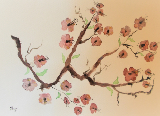 Jurita. Sakura