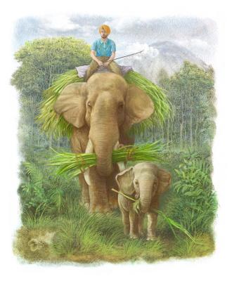 Vitaly Vasilevich Dudarenko. Elephants in the jungle