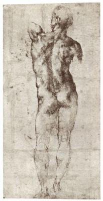 Michelangelo Buonarroti. Standing Nude, seen from behind