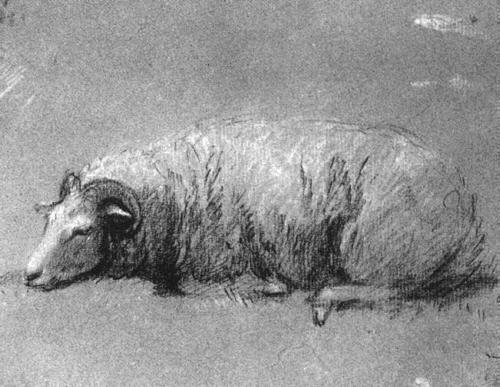Thomas Gainsborough. Resting sheep. Sketch