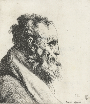 Jan Lievens. Profile of an elderly man with a beard