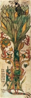 Masterpieces of unknown artists. Icelandic manuscript