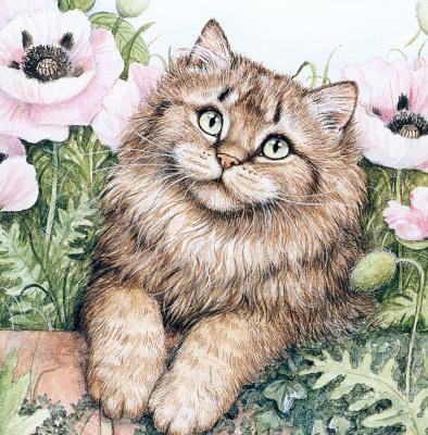 Дебби Кук. Симпатичный кот