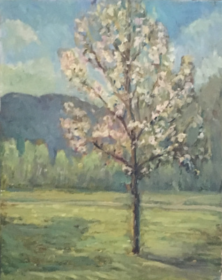 Виктория Мальшакова. The apple tree is blooming.