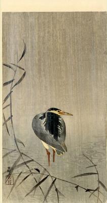 Охара Косон. Птицы 79