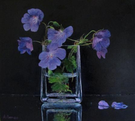 Andrew Lumez. Forest flowers