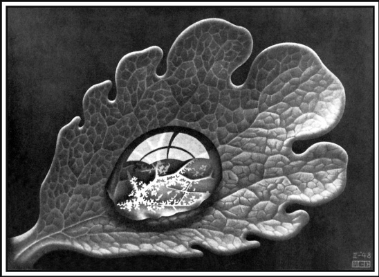 Maurits Cornelis Escher. Dewdrop