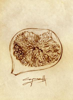 Nikolai Nikolayevich Sednin. The profile of the fruit