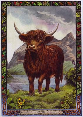 Билл Уортингтон. Корова