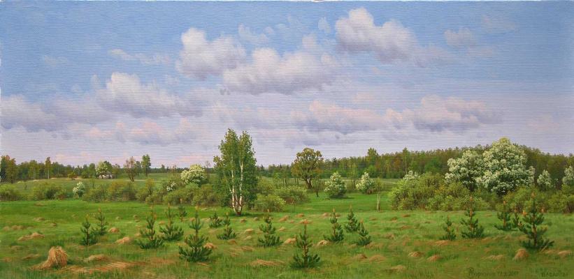 Alexander Vasilyevich Zoryukov. Edge of wild cherry
