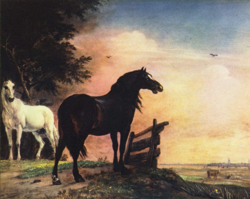 Paulus Potter. Horses in the meadow