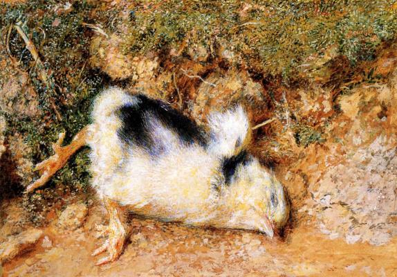 William Holman Hunt. A dead chicken John Ruskin