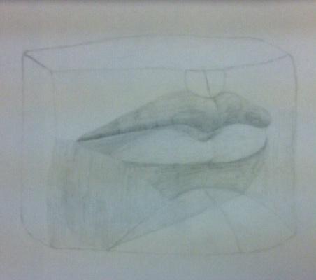 Милунишка Майер. Незаконченные губы