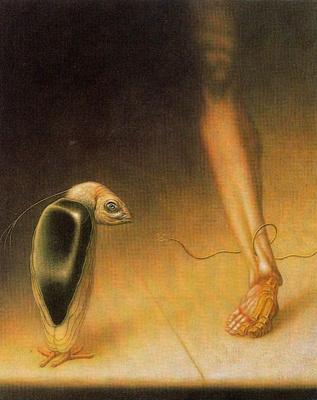 Висуализадор Де Ймаген. Сюжет 12