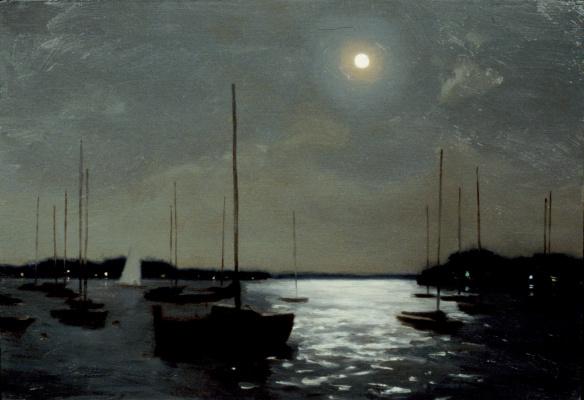 Стивен Дж Левин. Лунный свет