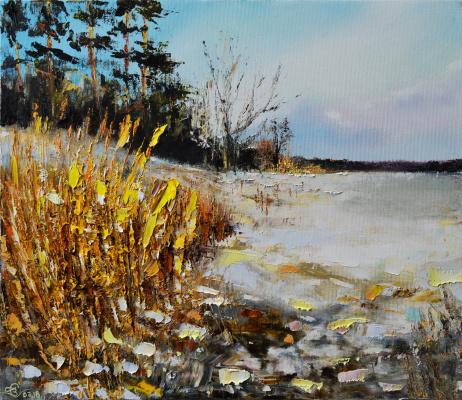 Vadim Anatolyevich Stolyarov. The proximity of spring