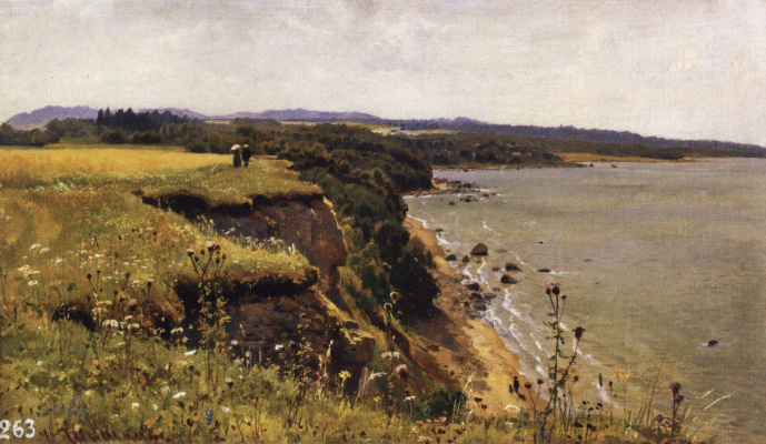 Ivan Ivanovich Shishkin. Off the coast of the Gulf of Finland (Adrias near Narva). Sketch for the eponymous painting