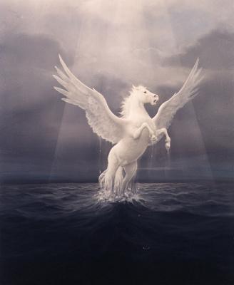 Дэвид Жан. Белые крылья