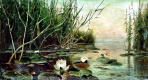 Юлий Юльевич Клевер. Озеро с водяными лилиями