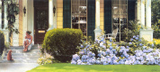Heide Press. Flowering