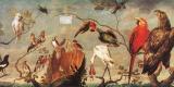 Франс Снейдерс. Концерт птиц