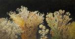 Alexandre Pavlenko. Травы.