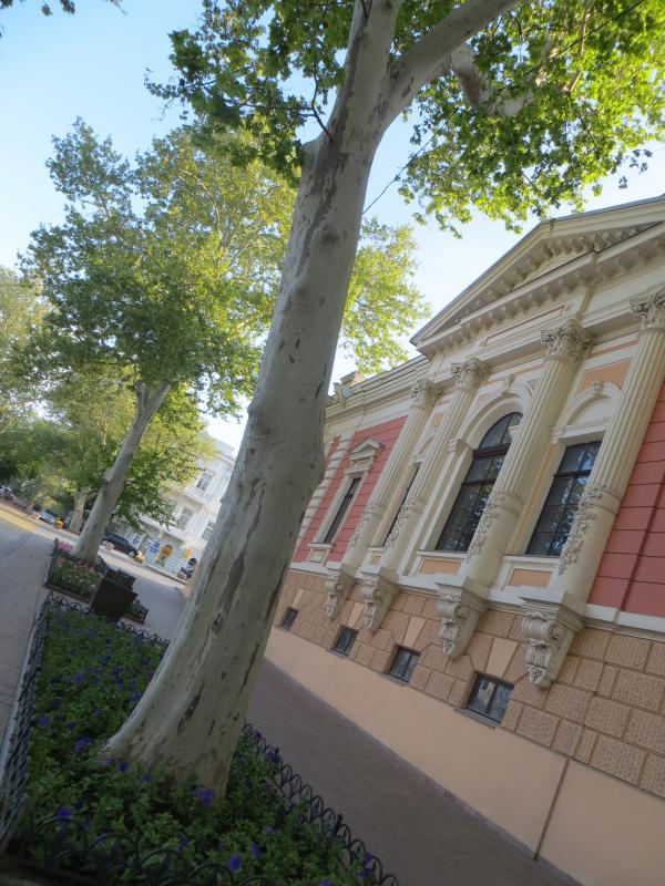 Здание некогда Английского клуба (более известно современникам как Музей Морского флота): цвета были