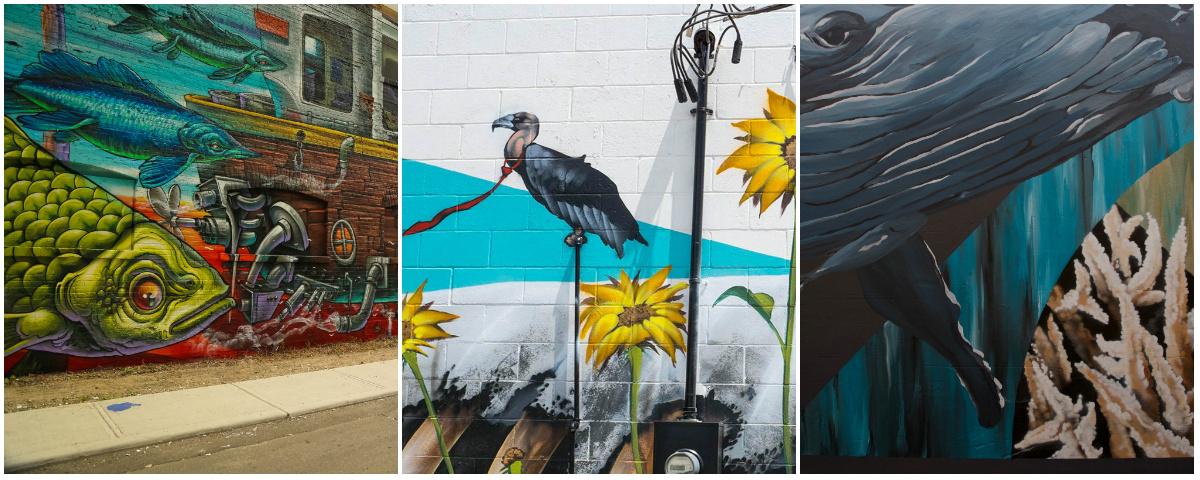 Стрит-арт-дайджест. Муралы проекта Sea Walls для спасения океанов