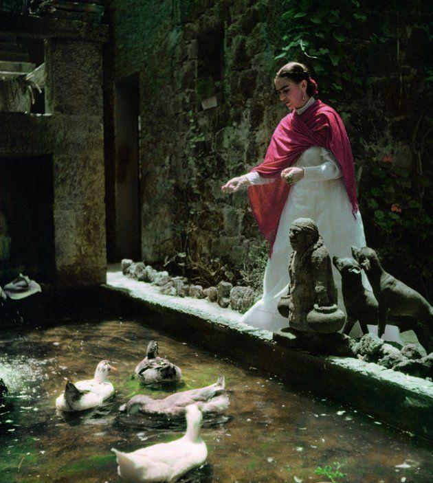 На дачу к Фриде Кало: к выставке в Нью-Йорке воссоздают сад мексиканской бунтарки