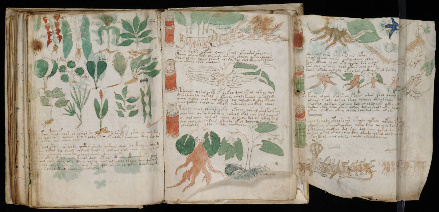Canadian computing scientists deciphered secret language of the 600-year-old Voynich Manuscript