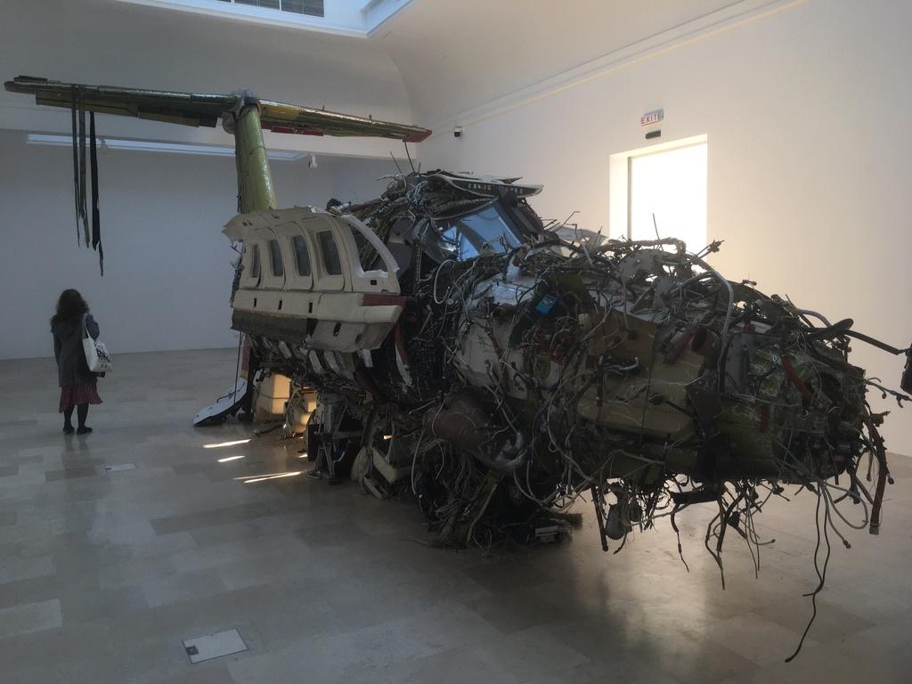 Поляк Роман Станьчак для своей работы «Бегство» буквально вывернул наизнанку частный самолет - симво