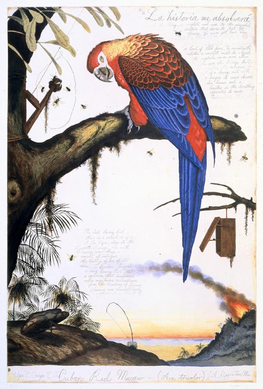 """""""Пение и тишина. Птицы в современном искусстве Америки"""": картины для настроения и полета!"""