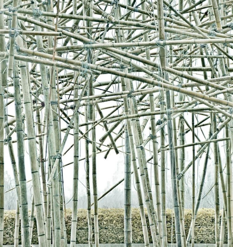 Пять художников, с творчеством которых вы столкнетесь в фильме «Ной»