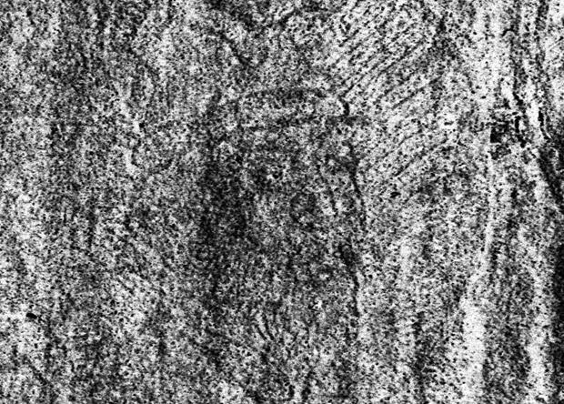 Ученые выявили единственный прижизненный портрет Ивана Грозного