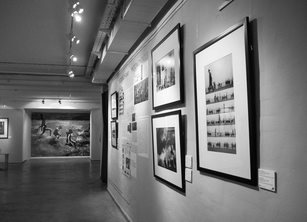 спрашивают картинки галерея черно белые род тушканчик