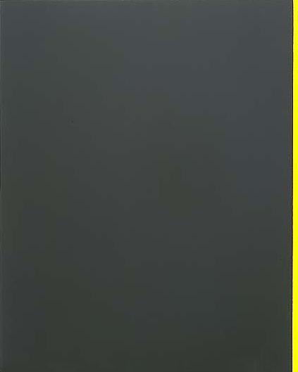 Барнетт Ньюман. Желтый край