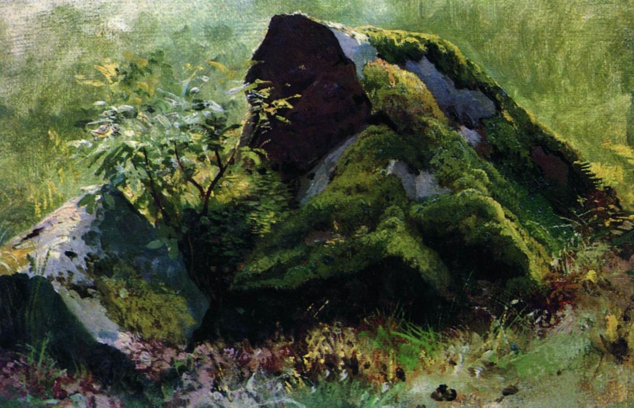 Иван Иванович Шишкин. Камни