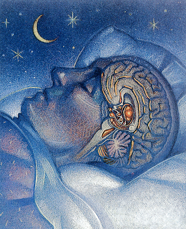 Грег Коуч. Ночной сон
