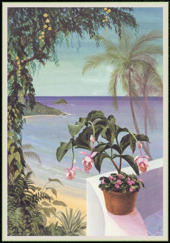 Уильям Вуд. Цветы на стене
