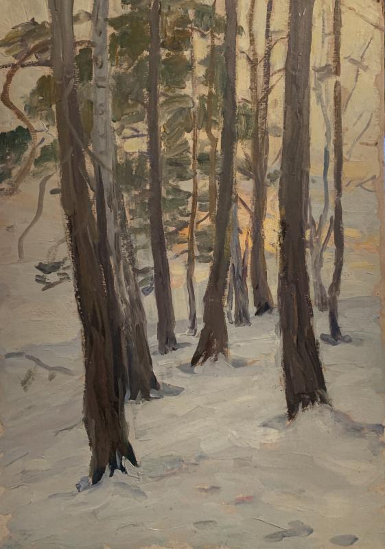 Oleg Alekseevich Dmitriev. Winter sunset in Tarusa
